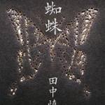『夜蜘蛛』(田中慎弥)_書評という名の読書感想文