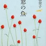 『窓の魚』(西加奈子)_書評という名の読書感想文