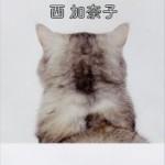 『白いしるし』(西加奈子)_書評という名の読書感想文