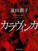 『カラヴィンカ』(遠田潤子)_書評という名の読書感想文