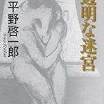 『透明な迷宮』(平野啓一郎)_書評という名の読書感想文